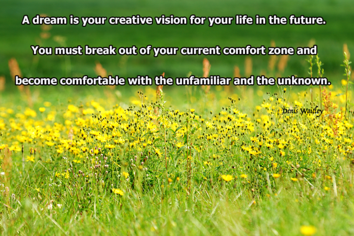 A dream is your creative vision for your life in the future